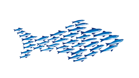 Small Fish Partner Program